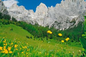 Trentino magico Primiero