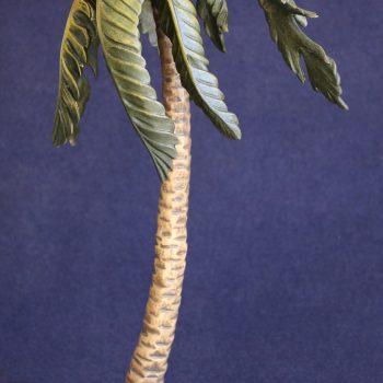 palma presepe