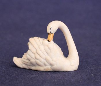 Swan with head turned