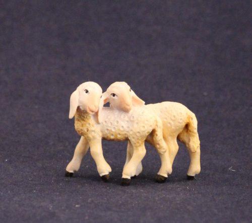 agnellini in coppia