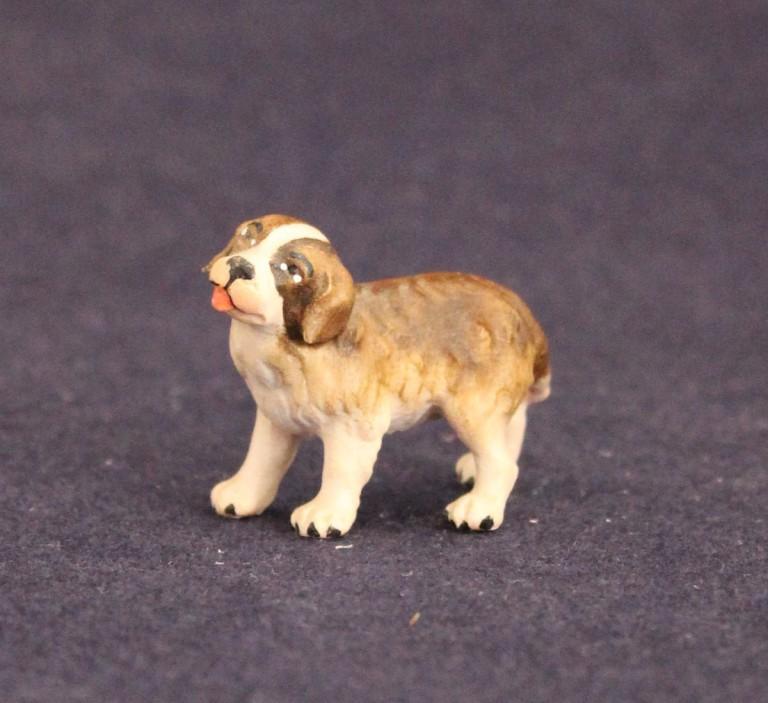 St. Bernard puppy turned left
