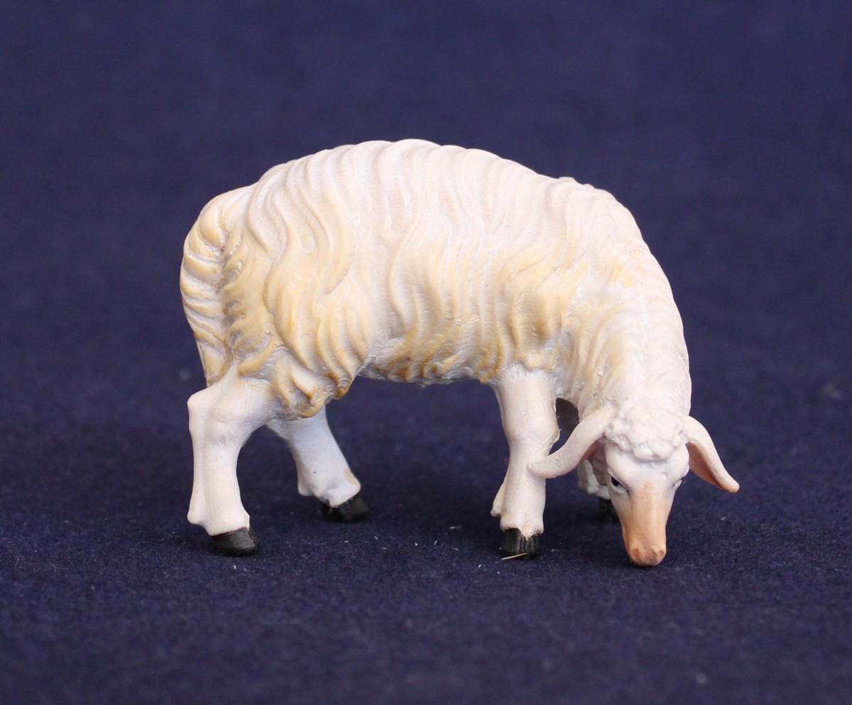 Sheep eating 2