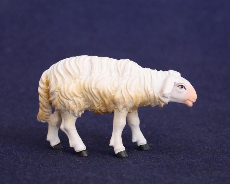Sheep walking 2