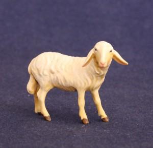 Sheep turned left